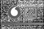 logo_fz